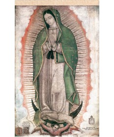 """Our Lady of Guadalupe Faux Cactus Textile Banner 40"""" x 68"""""""