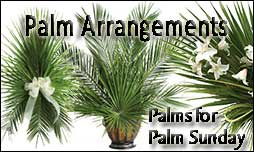 Palm Arrangemehts